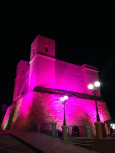 THE PINK TOWER 2