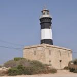 Delimara Lighthouse  (13)